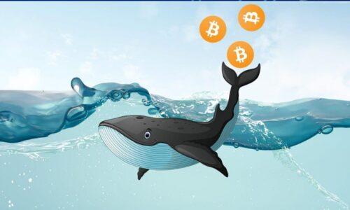 1 Milyar Dolarlık Bitcoin Transferi, Arkasında Kim Var?