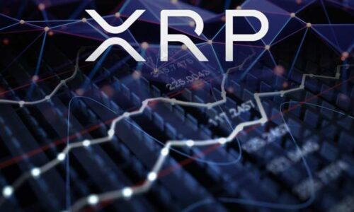XRP Increased 10%